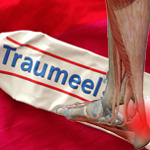 Traumeel, a natural way to tend sore muscles and minor sports injuries